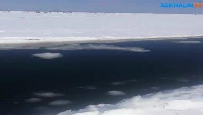 Рыбаки вОхотском продолжают испытывать напрочность леди нервы спасателей
