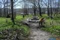 Парк имени Леонова вАлександровске-Сахалинском очистили отмусора
