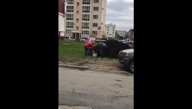 На улице Горького вЮжно-Сахалинске люди безугрызений совести запасаются черноземом