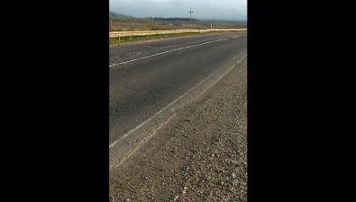Мойва покрыла несколько километров автодороги Южно-Сахалинск— Оха