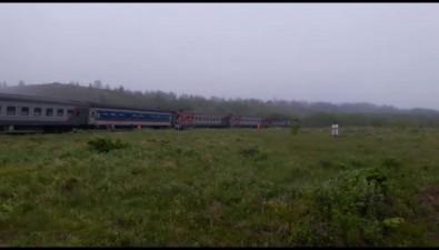 Два человека погибли пристолкновении пассажирского поезда игрузовика вМакаровском районе