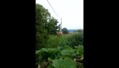 Во Владимировке пожарные потушили опору ЛЭП
