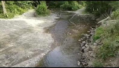 Жители Березняков сообщили рыбоохране опропавшей реке Колке