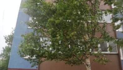 Занятия первой смены вюжно-сахалинских школах отменены