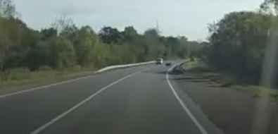Медведь перебежал дорогу перед автомобилями натрассе Южно-Сахалинск— Холмск