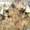 Сотрудники поронайского лесничества поймали медвежонка врайоне Малиновки