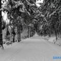 На чеховском перевале готова лыжня