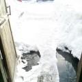 Канализационные воды счервями подтапливают домпо улице Коммунистической вШахтерске