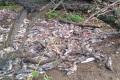 Пограничники наИтурупе задержали группу браконьеров