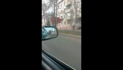 Автомобиль Toyota Crown сбил двух женщин напешеходном переходе вПоронайске