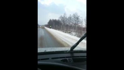 Toyota Land Cruiser иMazda Tribute вылетели страссы вокрестностях Южно-Сахалинска