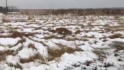 Отсутствие помощи, клиентов инизкие цены— сахалинские депутаты узнали огазовых проблемах