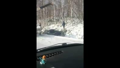 В районе села Успенского наСахалине изкювета достают иномарку