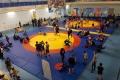 Региональный турнир повольной борьбе вНогликах собрал более 160 спортсменов