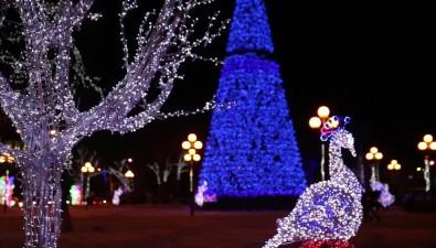 Новый годв формате LED— какрождается главная ельСахалина