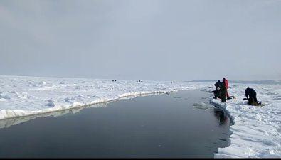 """""""Пусть мама услышит, пусть мама придет"""": очередную полынью преодолевали очередные рыбаки вОхотском"""