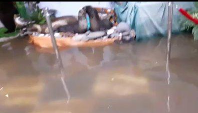 В Курильске затопило музей