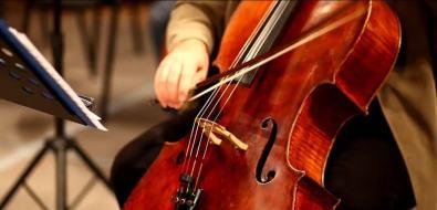 Венский филармонический Штраус оркестр погрузит сахалинцев вмир классической музыки