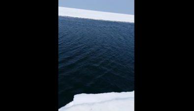 В Охотском наотплывающей отберега льдине остались больше 30 рыбаков