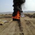 В Холмском районе сжигают трупы лошадей