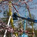 Специалисты невыявили существенных нарушений вработе аттракционов впарке Южно-Сахалинска