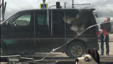Неработавший светофор спровоцировал ДТПна перекрестке вЮжно-Сахалинске