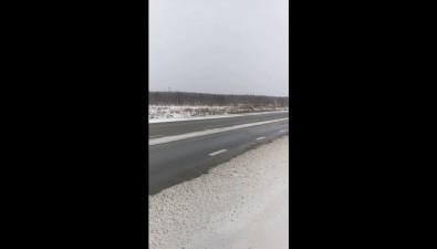Сахалинец отсудил удорожников 150 тысяч рублей заприлетевший влобовое стекло камень