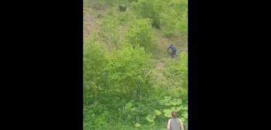 Агрессивный сахалинец пугает медведей наХолмском перевале