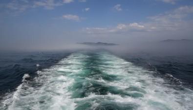 У берегов Шикотана идет близнецовый ловсардины иваси искумбрии