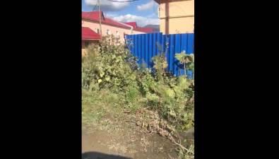 В течение дняна улице Котиковой вЮжно-Сахалинске немогут устранить утечку
