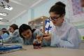 Школьников Сахалина научили взрывать натрий, определять качество бензина иукрощать фараоновых змей