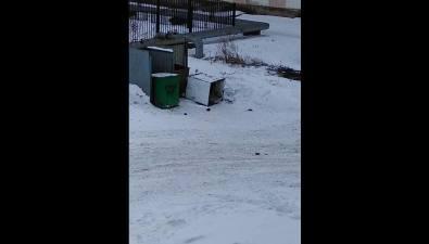 Жильцы пятиэтажки поулице Советской вХолмске вынуждены соседствовать скрысами