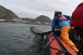 Тренинг пораспутыванию тюленей отпластикового мусора провели наСахалине