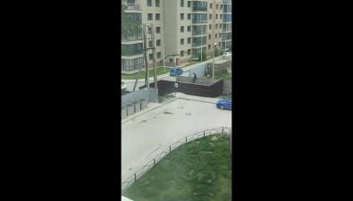 """""""Замуровали все-таки"""": калитку на""""Аралии"""", которую мэробещал снять, закрыли"""