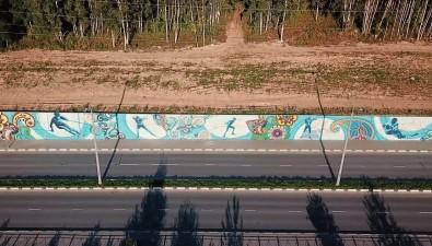 На Сахалине создали самую большую наДальнем Востоке уличную роспись