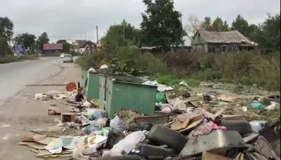 Жильцы домов поулицам Трудовой иКотиковой устали отвида свалки возле мусорных контейнеров