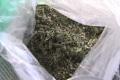 Полкилограмма марихуаны нашли полицейские уюжносахалинца