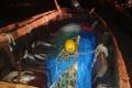 Пограничники задержали браконьеров вНогликском районе
