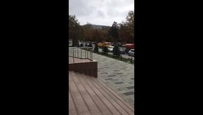 Новые елиперед зданием суда вЮжно-Сахалинске посадили ивыкопали