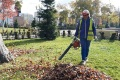 Скверы ирастения Южно-Сахалинска готовят кзиме