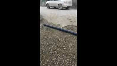 Замурованные мусорные контейнеры наСахалинской, 147 никто невывозит