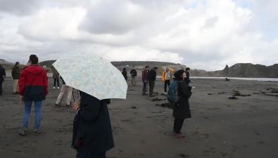Японские туристы провели наИтурупе всего полтора часа