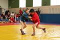 Всероссийский день самбо наСахалине отметят соревнованиями имастер-классом
