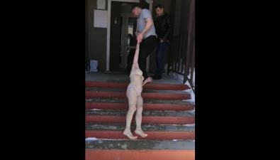 Раздетую женщину волокли поподъездной лестнице вНовотроицком примножестве свидетелей