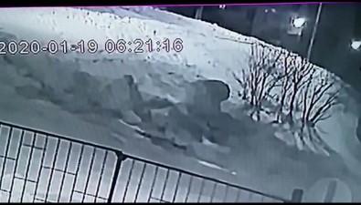 """""""Субару Форестер"""" пригрелся всугробе после ночного полета поОхе"""