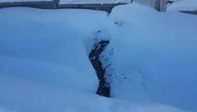 Ручей канализационных стоков стекает наулицу Горького из-под коттеджей возле ботсада