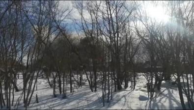 При пожаре вчастном секторе Южно-Сахалинска погиб ребенок