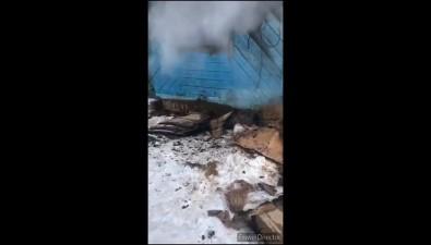 В Ногликах сгорели пять щенков