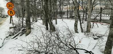 Капремонт Больничной вЮжно-Сахалинске нелишит улицу зелени