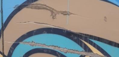 В Южно-Сахалинске вместе соснегом соскребли часть мурала наГорького